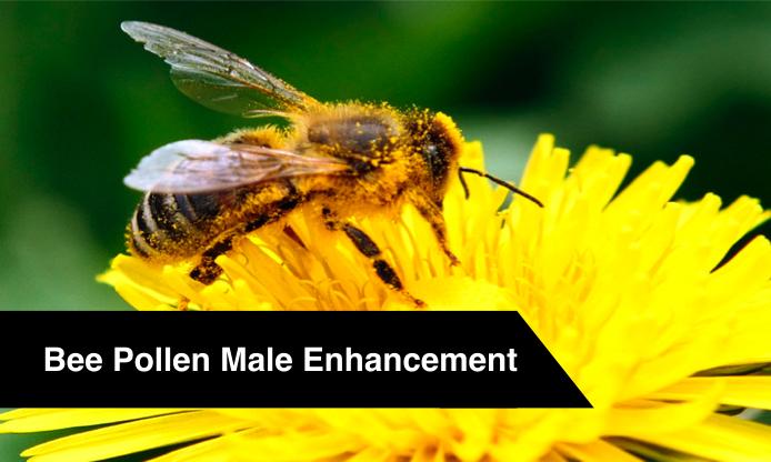 bee-pollen-male-enhancement